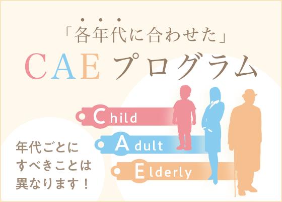 「各年代に合わせた」CAEプログラム